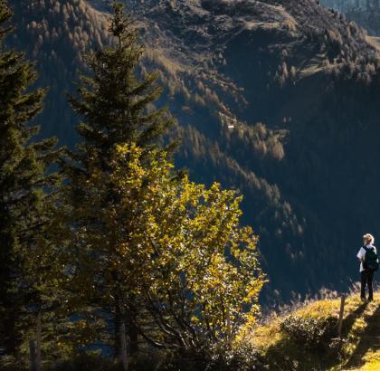 8 uporabnih nasvetov za varno pot v hribe in nazaj